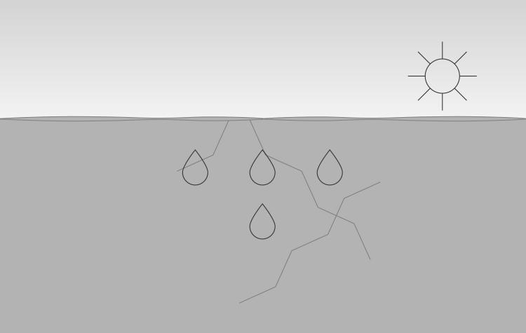 Water verdampt en dringt samen met opgeloste zouten naar buiten. Het zout kristalliseert en vormt uitbloei en ophopingen aan het oppervlak.