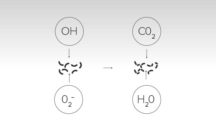 De bij de fotokatalytische reactie vrijgekomen radicalen breken organische vervuiling (met name stoffen waarin koolstofatomen voorkomen zoals b.v. VOC's, bacteriën, algen en vetten) af en zetten ze om in onschadelijke stoffen zoals water en koolstofdioxide.